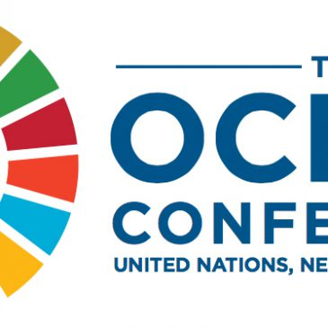 Plastic Busters at the Ocean Conference, UN, New York, 5-9 June 2017