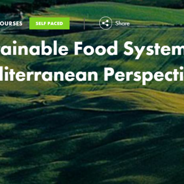 ERASMUS+ Virtual Exchange: Sustainable Food Systems 2020