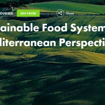 ERASMUS+ Virtual Exchange: Sustainable Food Systems 2020